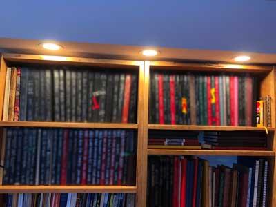 Sheri-D Wilson's journal collection
