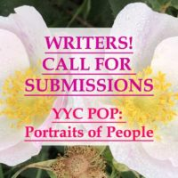 YYC POP: Call for Submission | Sheri-D Wilson