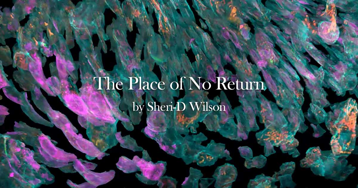 The Place of No Return video featured image | Sheri-D Wilson