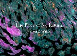 The Place of No Return video page image | Sheri-D Wilson